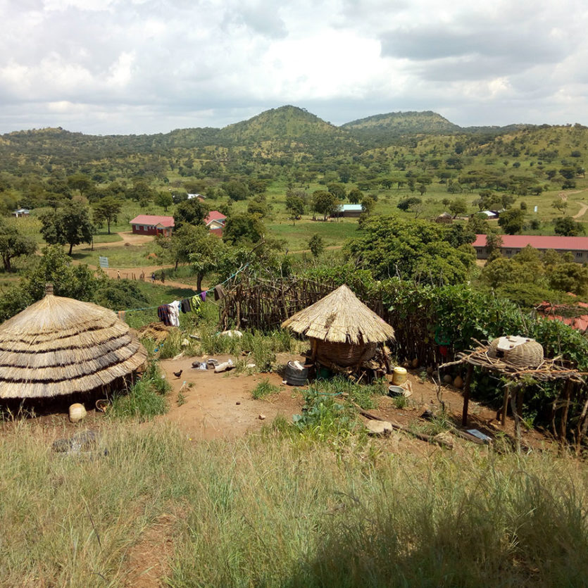 african scenery